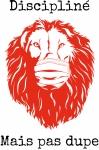 illustration lion masque4.jpg